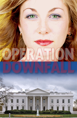 Political Thriller in Washington, Los Angeles
