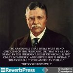 Theodore Roosevelt Criticism of the President