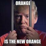 trump in Orange Jail Suit